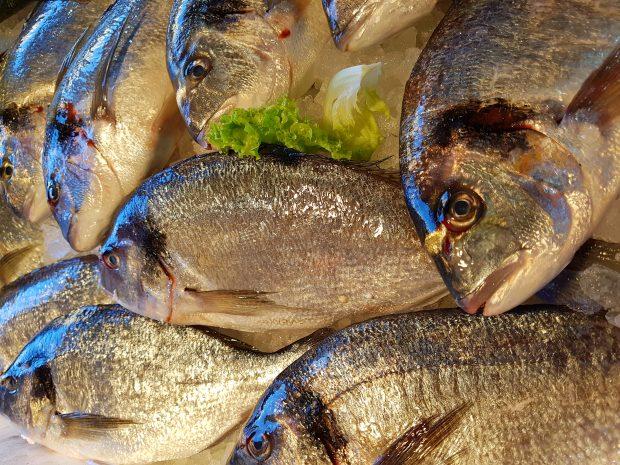 wenecja-dla-barillacup-ryby-targ-Rialto